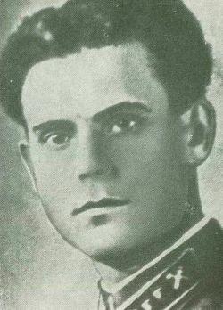 Город Малин. Герой Советского Союза Павел Тараскин.